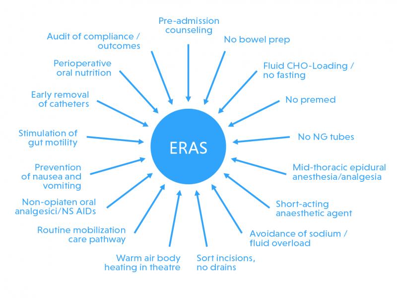Alle elementen die bijdragen aan ERAS gevisualiseerd.